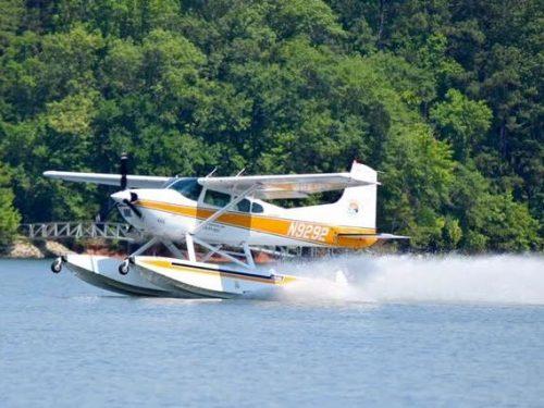 wingnit-takeoff